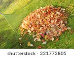 Pile Of Fall Leaves With Fan...