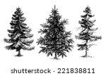 pine trees   christmas trees... | Shutterstock .eps vector #221838811