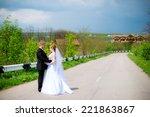 young bride and groom walking... | Shutterstock . vector #221863867