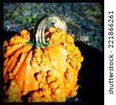 Instagram Filter Image Of A...