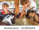 Stock photo two kids boy and girl taking care of domestic animals on farm 221892694