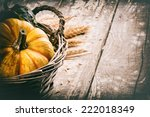 Autumn Still Life With Pumpkin...
