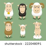 Sheep Set Collection  With...