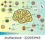 brain infographics  brain... | Shutterstock .eps vector #222053965