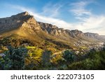 table mountain and the twelve... | Shutterstock . vector #222073105