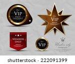 vip pass | Shutterstock .eps vector #222091399