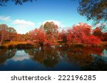 Stock photo golden autumn on the lake everything was yellow in the fall 222196285