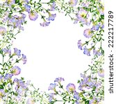 Floral Background Petunia 2