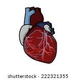 heart   Shutterstock .eps vector #222321355