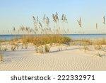 The Rippled White Sand Dunes...
