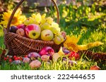 A Basket Full Of Fruits On...