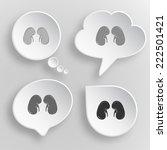 kidneys. white flat vector...   Shutterstock .eps vector #222501421