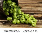 hops in basket on brown wooden... | Shutterstock . vector #222561541