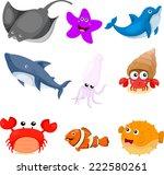 Illustrator Of Sea Animals Set