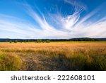 gorgeous magnificent landscape... | Shutterstock . vector #222608101