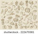 vector set of different hand... | Shutterstock .eps vector #222670381