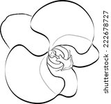 orchid on white background   Shutterstock .eps vector #222678727
