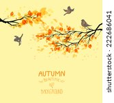 Branches With Autumn Leaves An...