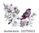 wild exotic bird on twig vector ... | Shutterstock .eps vector #222755611