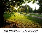 sunset in hyde park | Shutterstock . vector #222783799