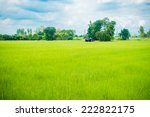hut in the green field | Shutterstock . vector #222822175