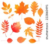 watercolor collection of... | Shutterstock .eps vector #222860491