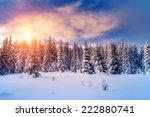 fantastic evening landscape... | Shutterstock . vector #222880741