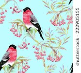 bullfinches birds on a branch.... | Shutterstock . vector #222905155