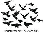 illustration with fifteen black ... | Shutterstock .eps vector #222925531
