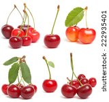 cherry collection | Shutterstock . vector #222935401