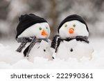 Two Little Snowmen In A Group...