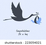 vector illustration of stork... | Shutterstock .eps vector #223054021