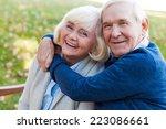 let the love last forever....   Shutterstock . vector #223086661