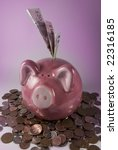 Pink Piggy Bank Surrounded Wit...