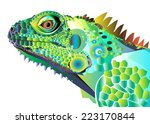 Iguana Portrait Vector Color...