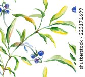 seamless pattern watercolor and ... | Shutterstock .eps vector #223171699