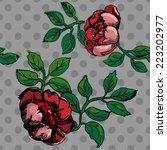vector seamless vintage pattern ... | Shutterstock .eps vector #223202977