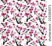 realistic sakura blossom  ... | Shutterstock . vector #223283071
