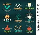 vintage typography halloween... | Shutterstock .eps vector #223299115