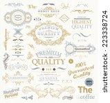 vintage vector design elements... | Shutterstock .eps vector #223338724