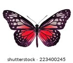 Beautiful Red Butterfly...