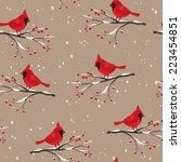Cardinal Bird Beautiful Winter...