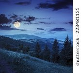 slope of mountain range with coniferous forest and village at night in full moon light - stock photo