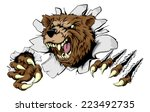 a scary bear ripping through... | Shutterstock .eps vector #223492735