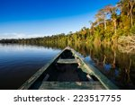 reflects of the jungle on the... | Shutterstock . vector #223517755