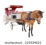 Horse Fairy Tale Carriage Cabi...