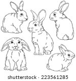 five black and white sketches... | Shutterstock .eps vector #223561285