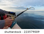 man fishing on a big game... | Shutterstock . vector #223579009
