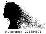 silhouette of woman's head with ... | Shutterstock .eps vector #223584571