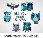 Hand Drawn Owls Set